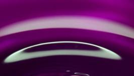 Il Colore Viola - Purple Colour