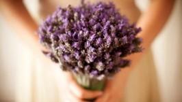 Il Bouqet di Lavanda - Lavender Bouquet