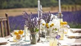 Matrimonio limone e lavanda, profumi del Mediterraneo