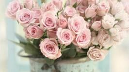 Matrimonio shabby chic: stile romantico e ecologico