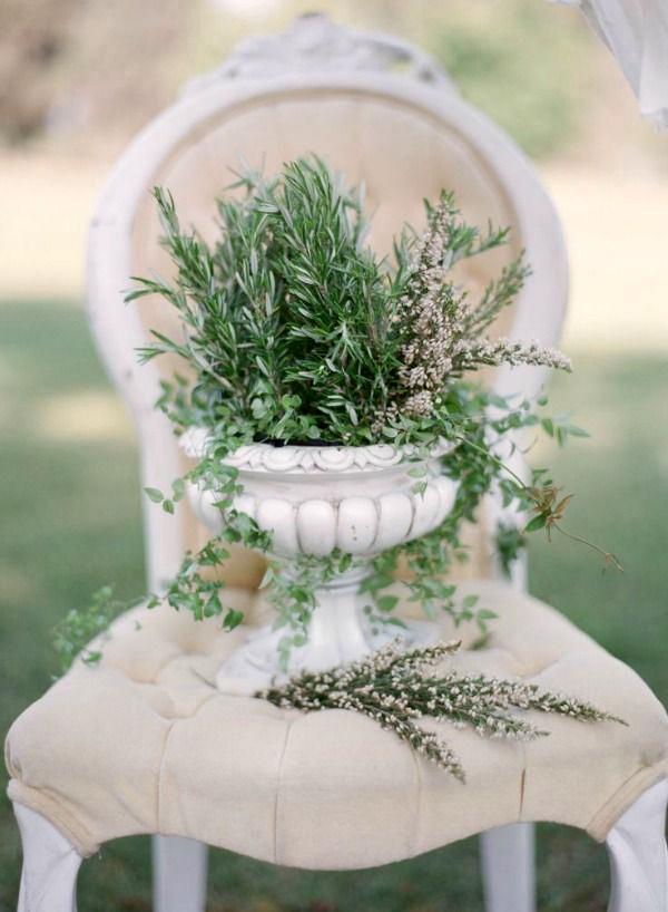 composizioni con erbe aromatiche